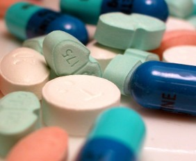 pilula-maconica-bula